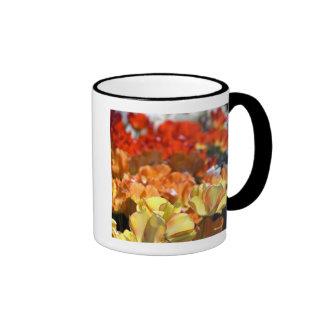 Netherlands aka Holland), Lisse. Keukenhof Coffee Mug