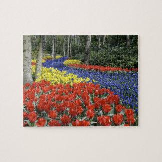 Netherlands, Holland, Lisse, Keukenhof Gardens Jigsaw Puzzle