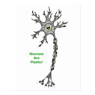 Neurons Are Plastic! Postcard