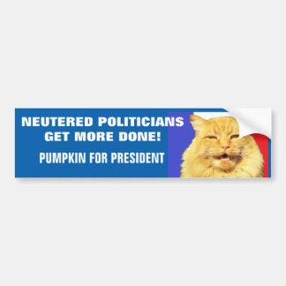 Neutered Politicians Get More Done - Pumpkin Bumper Sticker