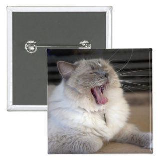 Neva Masquerade cat yawning 15 Cm Square Badge