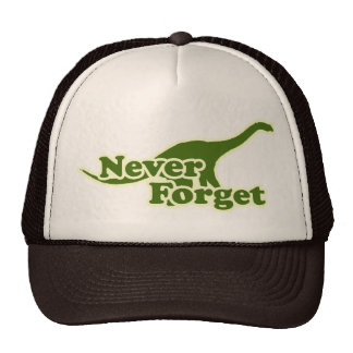 Never Forget Dinosaurs Hats