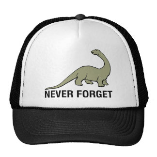 Never Forget Mesh Hat