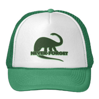 Never Forget the Dinosaurs Cap