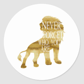 Never Forget Who You Are Classic Round Sticker