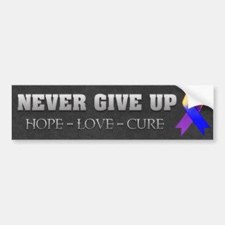 Never Give Up Hope Bladder Cancer Awareness Bumper Sticker