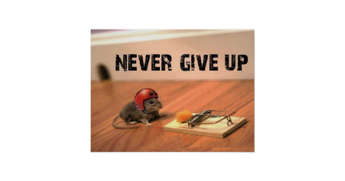 Never Give Up Mouse Poster | Zazzle
