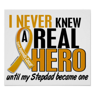 Never Knew a Hero 2 Stepdad Appendix Cancer Poster