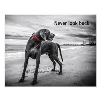 Never look back photo art