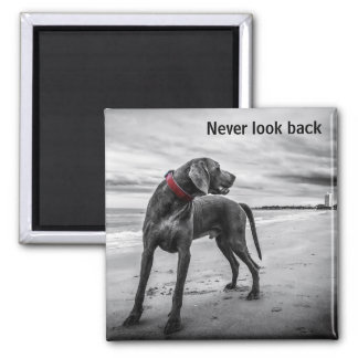 Never look back square magnet