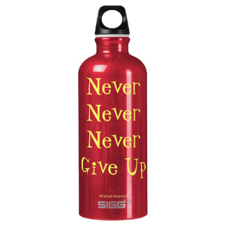 Never Never Never Give Up Quote Water Bottle