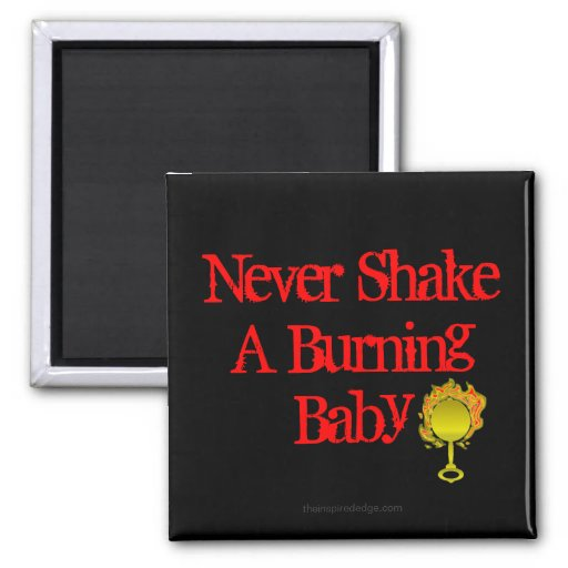 Never Shake A Burning Baby Magnet