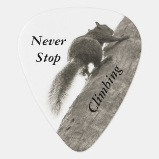 Never Stop Climbing Black and White Squirrel Plectrum