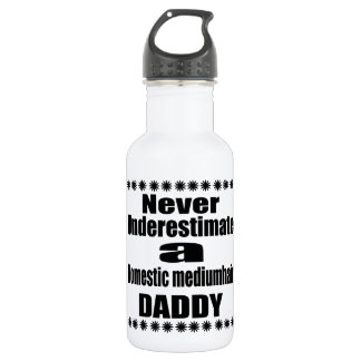Never Underestimate Domestic mediumhair Daddy 532 Ml Water Bottle