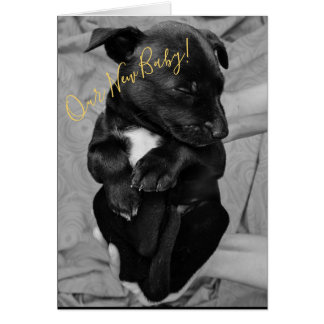 New Baby Beastie Announcement