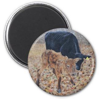 New Calf Magnet