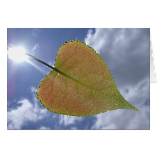New Cottonwood Leaf Card