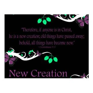New Creation Postcard