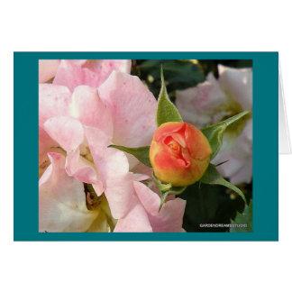 New Dawn Rosebud Blank Card