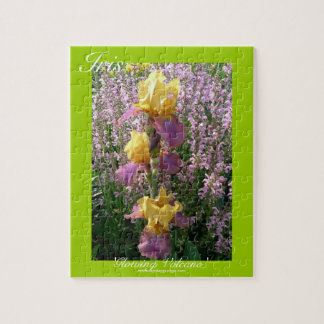 New Day Gardens Puzzles- Iris 'Glowing Volcano' Jigsaw Puzzles