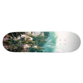 New Days Skateboard