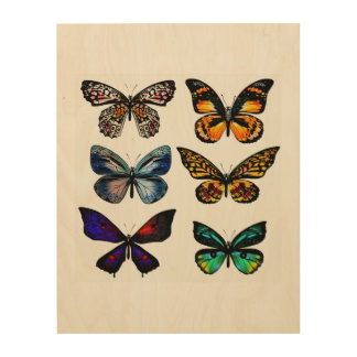 New design in Shop : wooden Board with butterflies Wood Prints