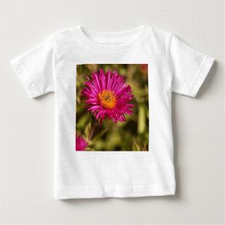 New England aster (Symphyotrichum novae angliae) Baby T-Shirt