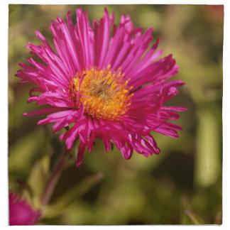 New England aster (Symphyotrichum novae angliae) Napkin