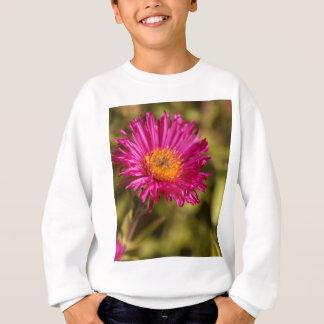 New England aster (Symphyotrichum novae angliae) Sweatshirt