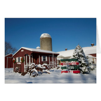 New England Christmas Trees Card
