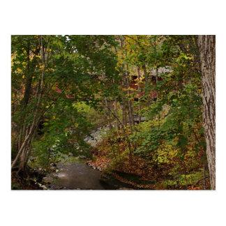 New England Covered Bridge Postcard