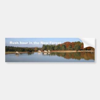 New Forest bumper sticker