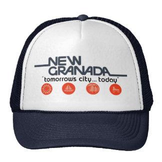 New Granada Tomorrows City Today Cap
