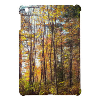 New Hampshire Autumn Forest iPad Mini Covers
