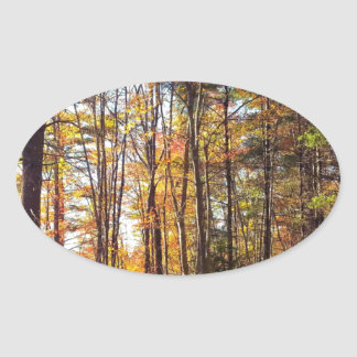 New Hampshire Autumn Forest Oval Sticker