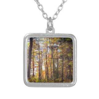 New Hampshire Autumn Forest Silver Plated Necklace