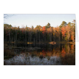 New Hampshire beaver pond in Autumn Card