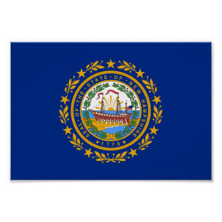 New Hampshire Flag Poster