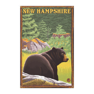 New HampshireBlack Bear in Forest Gallery Wrapped Canvas