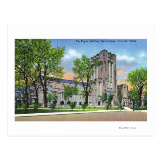 New Haven, CTYale University Payne Whitney Gym Postcard