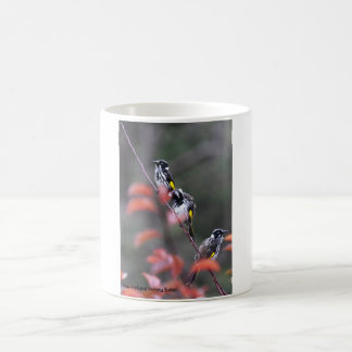 New Holland Honey Eater Coffee Mug