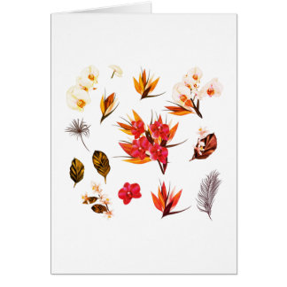 New in shop : Exotic hand-drawn Flowers greeting Card