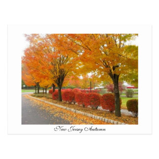 New Jersey Autumn Postcard