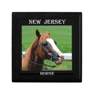 New Jersey Horse Small Square Gift Box