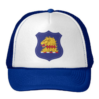 New Jersey National Guard - Hat