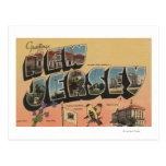 New Jersey (State Capital/Flower/Bird) Postcard