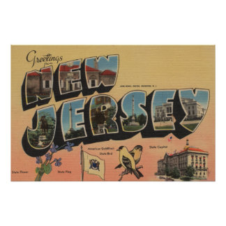 New Jersey (State Capital/Flower/Bird) Posters