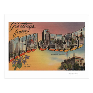 New Jersey (State Capital/Flower) Postcard