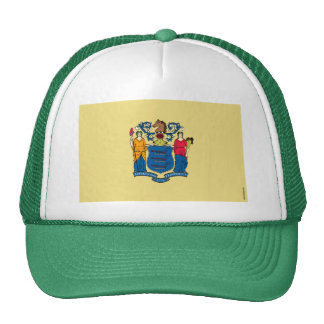 New Jersey State Flag Hat