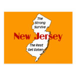 New Jersey: the strong survive; the rest get eaten Postcards